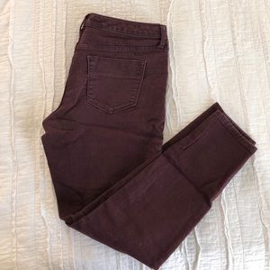 Purple Stretchy Jegging Jeans